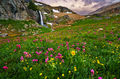 Porphyry Basin, Colorado, wildflowers, waterfall