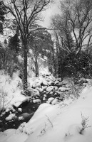 Grizzly Creek,Winter,