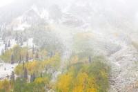 Clashing Seasons