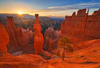 Thor, sunrise, Bryce Canyon, Utah, Navajo trial