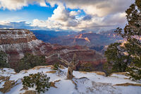 Grand Canyon,south rim,snowstorm