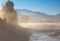 Ridgway Fog IV