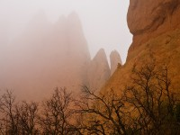 Garden of the Gods,Colorado,fog