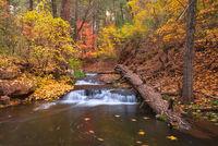 Horton Creek Trail, fall colors, Arizona, tonto, Payson