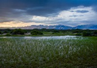 Sand Dunes,wetlands,Sangre,Colorado