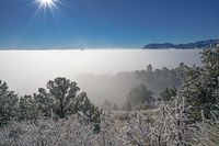 fog,rampart range,colorado,frost