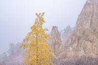 Garden of the Gods,Colorado,fall colors