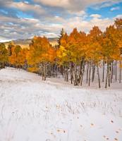 Mueller State Park,Colorado,Pikes Peak,snowstorm