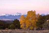 cottonwood,crestone,sangres,rosita,Colorado