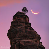 Sedona,moon,sunset