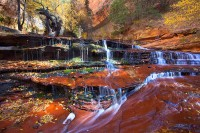 Zion,Left Fork,Subway