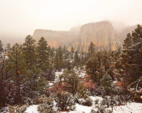 zion national park,utah,snow