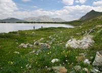 Ptarmigan Lake,Cottonwood Pass,Colorado