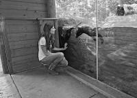 Otter Talk