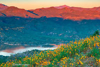 Bartlett Lake,sring,wildflowers,sunset