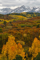 Ridgway,Dallas Divide,Fall