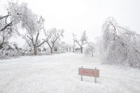 dodge city,ice storm,kansas,cemetery