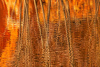 ripples,reflections,red rocks, Manitou,colorado springs