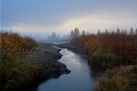 creek,fog,Teton