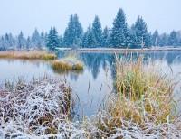 First Snow at Schwabacher
