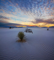 White Sands,New Mexico,sunset