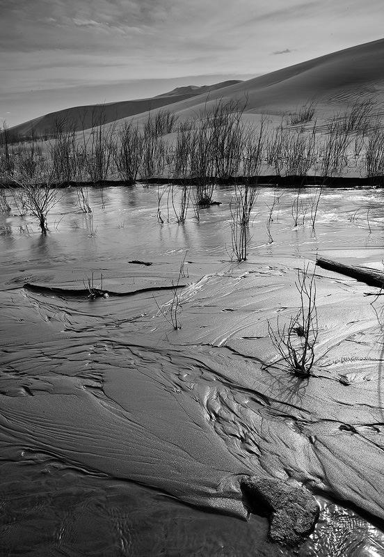 Medano,Great Sand Dunes,creek, photo