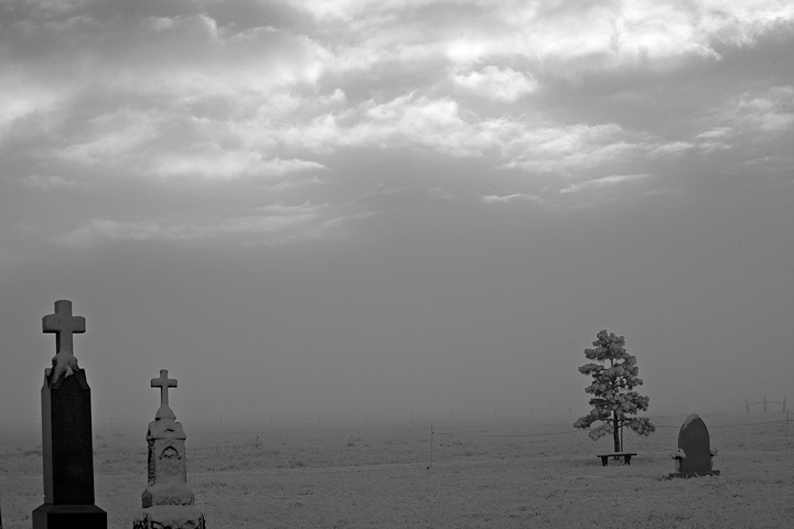 A view of the peaceful cemetary