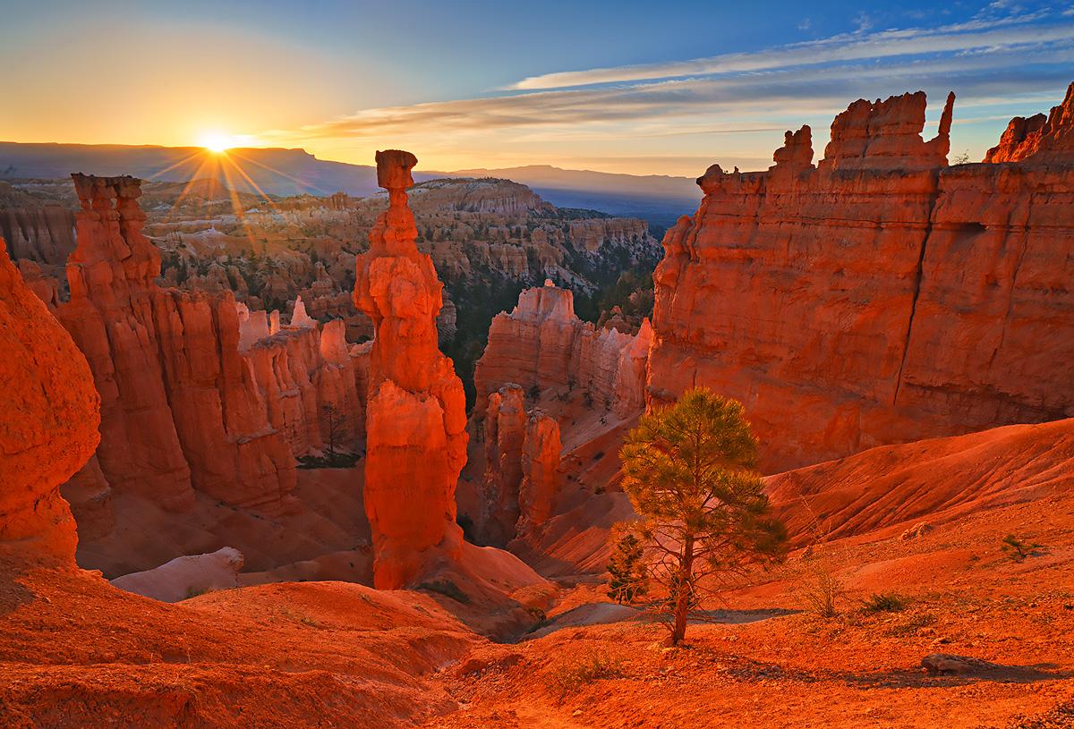 Thor, sunrise, Bryce Canyon, Utah, Navajo trial, photo
