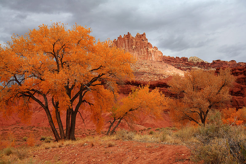 Capitol Reef,Utha,October, photo
