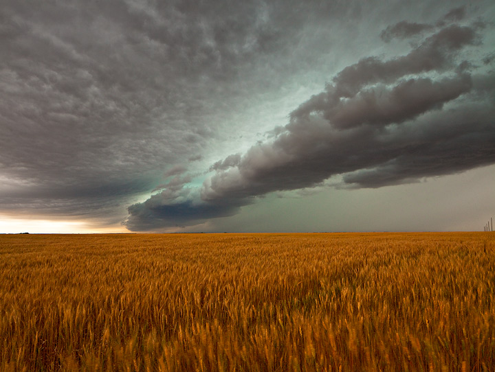 Texas Trouble. Strong storm moves through a Texas wheat field. The green color is caused by large hail suspended in the cloud...