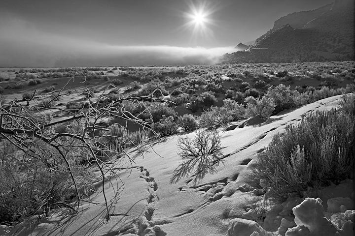 Colorado National Monument, sunrise, fog, hoar frost, sunstar, monochrome, winter, snow