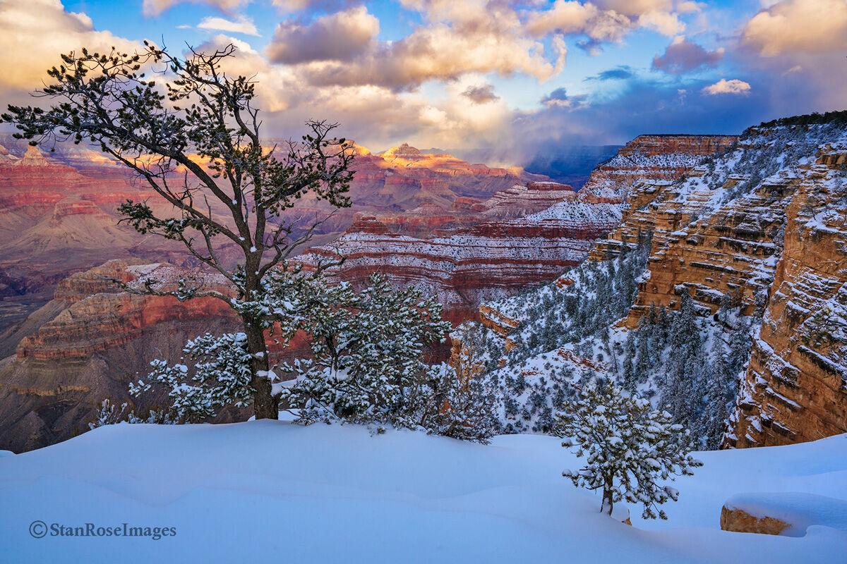 Grand Canyon,south rim,winter, photo