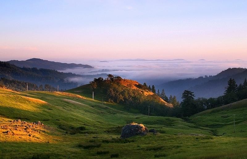 fog,Kneeland,California,sunset, photo