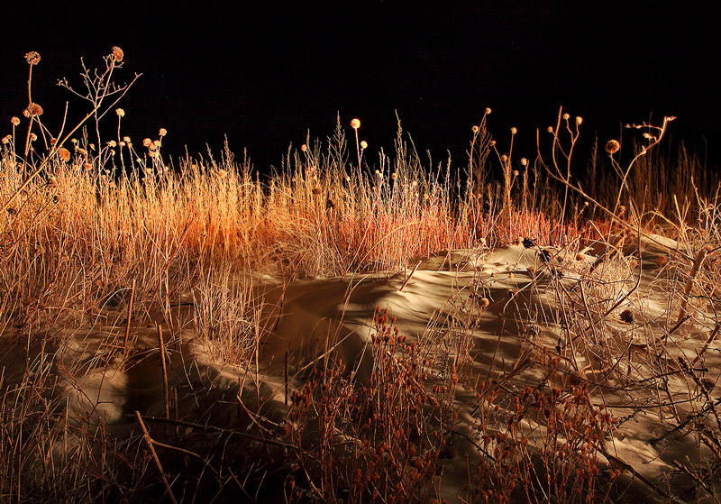 night,prairie, photo