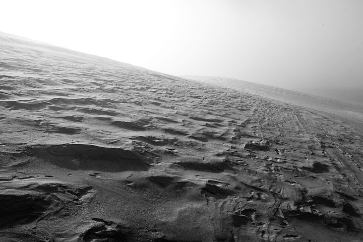 The bright fog makes the dunes look like the surface of some alien planet.