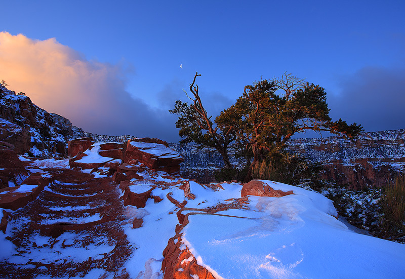 Grand Canyon,Kaibab,sunrise,Winter, photo