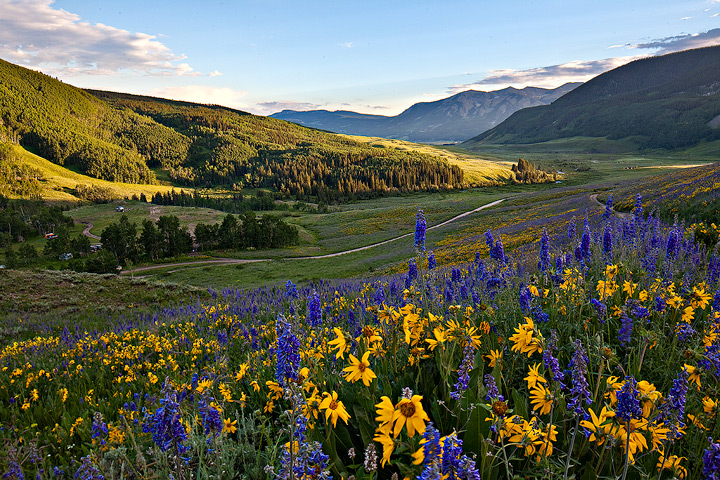 Crested Butte,Brush Creek, photo