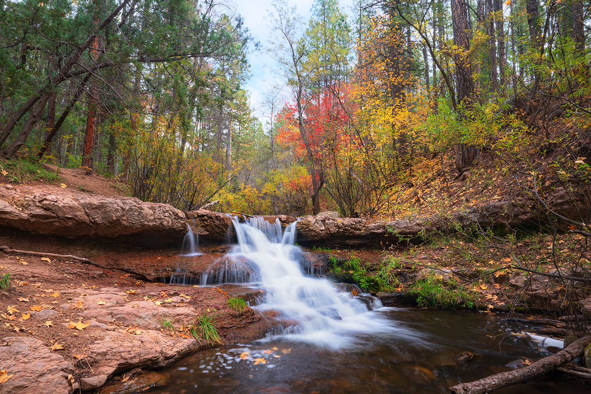 tonto, Horton Creek, Fall colors, cascade, payson, Arizona, photo