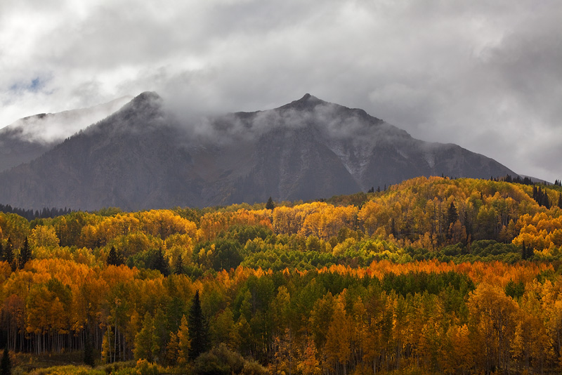 Kebler Pass, fall, photo