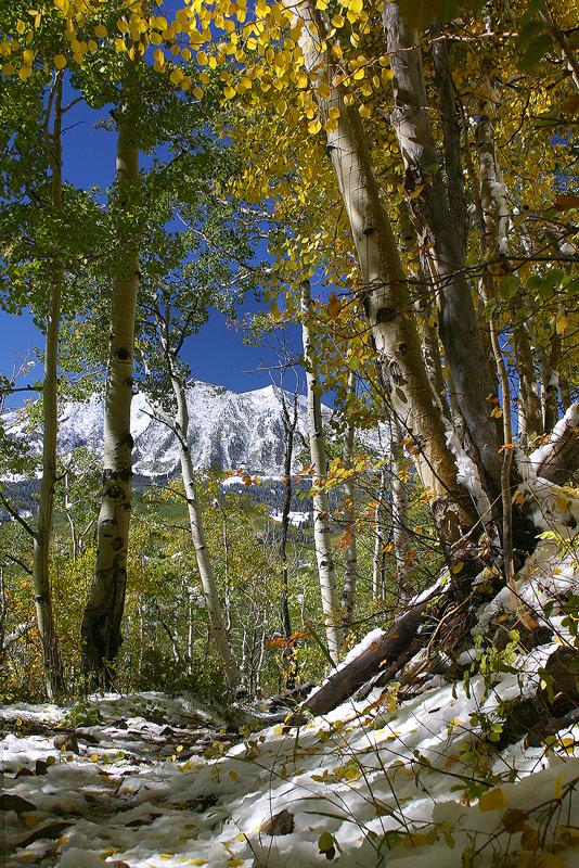 Elk Mountains,Colorado, photo