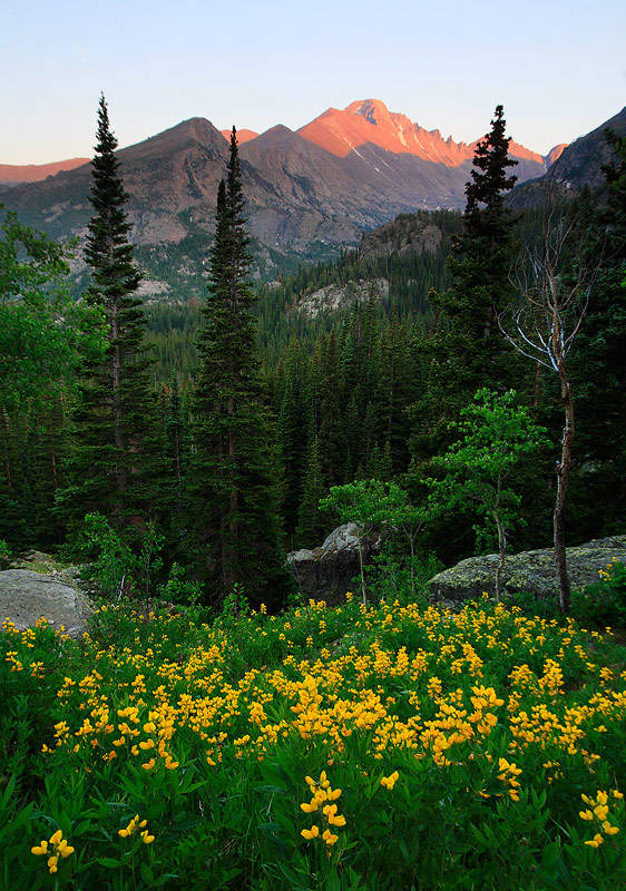 Rocky Mountain,Longs Peak,Colorado, photo