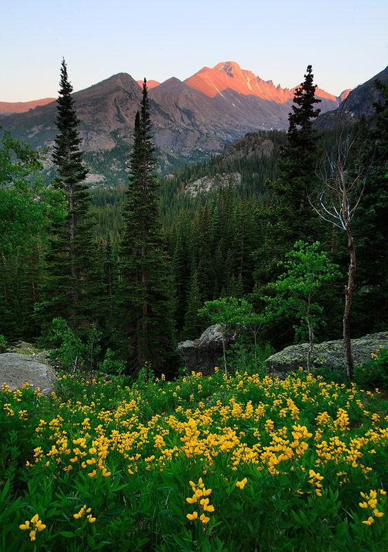 Rocky Mountain,Longs Peak,Colorado, photo