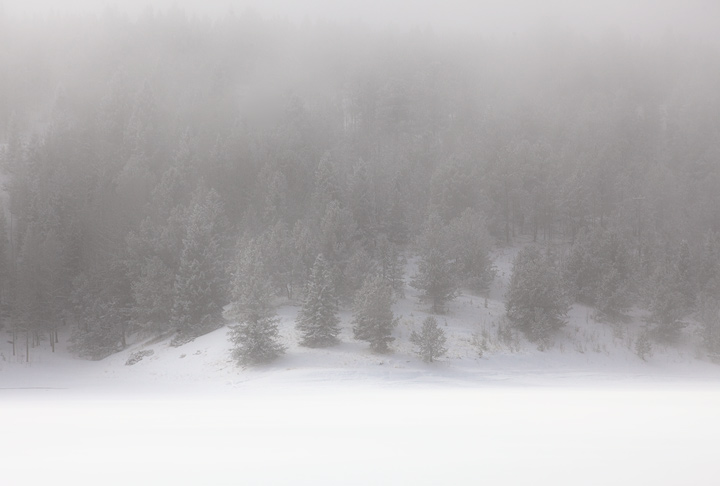 Crystal Lake emerging from the fog in Winter.