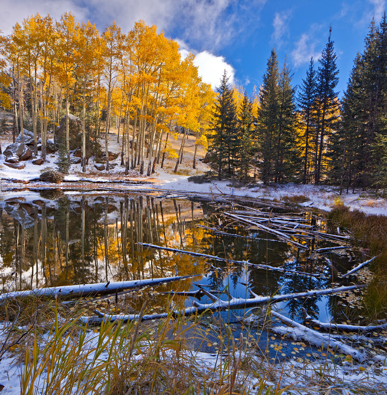Peak View Pond, October 2014, after a light snowfall.
