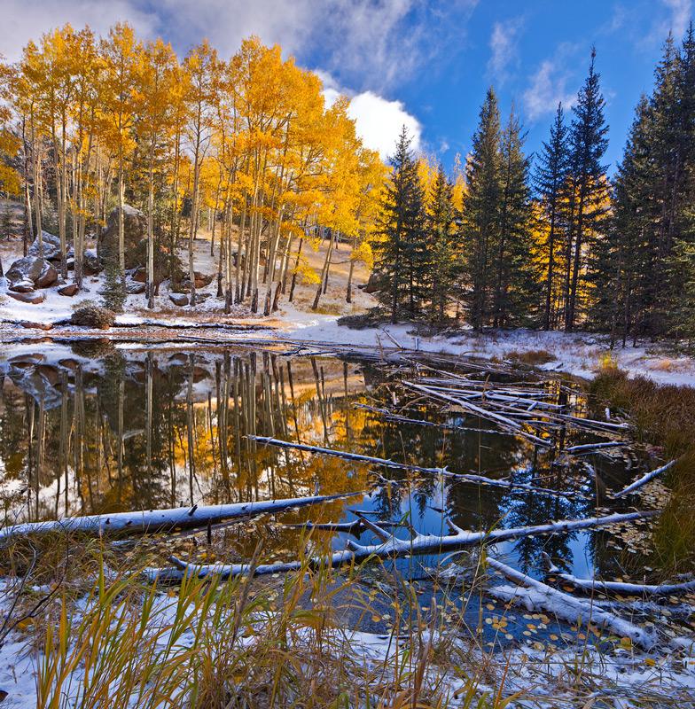 Peak View Pond,Mueller State Park,Colorado, photo