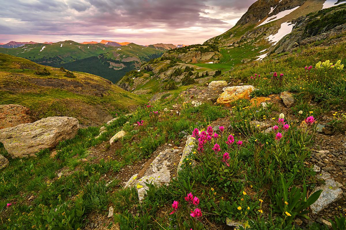 Porphyry Basin, Colorado, paintbrush, photo