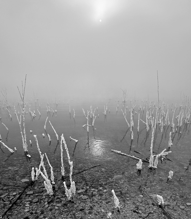 Lake Pueblo,Colorado,fog, photo