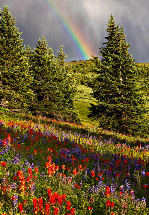 rainbow,Shrine Ridge,Colorado, photo