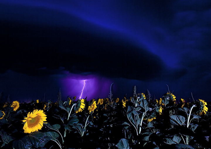 I scouted for some fields in the Goodland area, then waited for a good storm to roll on through. This is a 10s exposure; I froze...