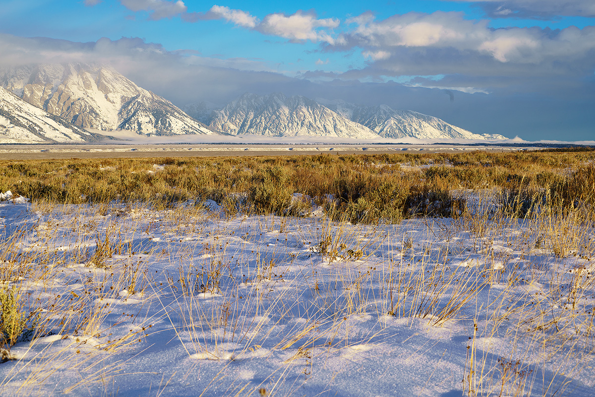 Grand Teton,Wyoming,fog,frost,antelope flats, photo
